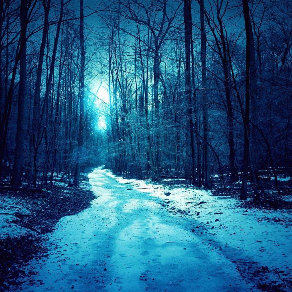 Winter trees roads ipad air wallpaper retina ipad - Ipad air moving wallpaper ...