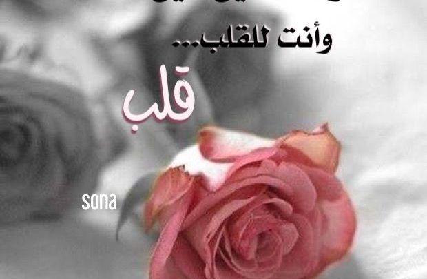 شعر صباح الخير حبيبتي ومقتطفات شعرية وخواطر رومانسية للمتزوجين Floral Floral Rings Flowers