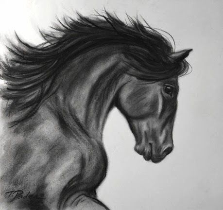 Charcoal Drawing Of Animals Images Desenho A Carvao Cavalo