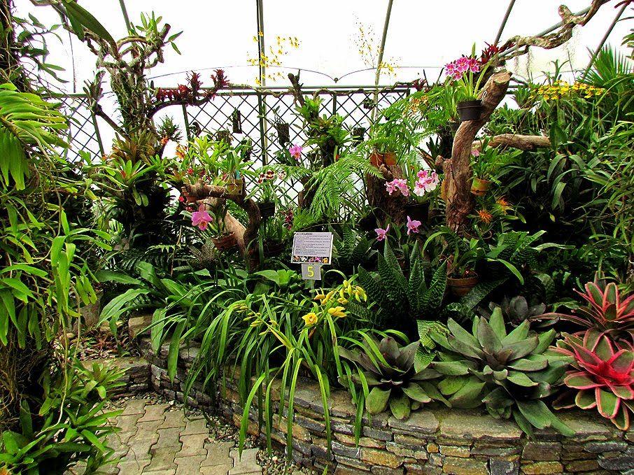 Inauguracion Conservatorio En Memoria De Kathy Y William Phelps Jardin Botanico Jardines Botanica