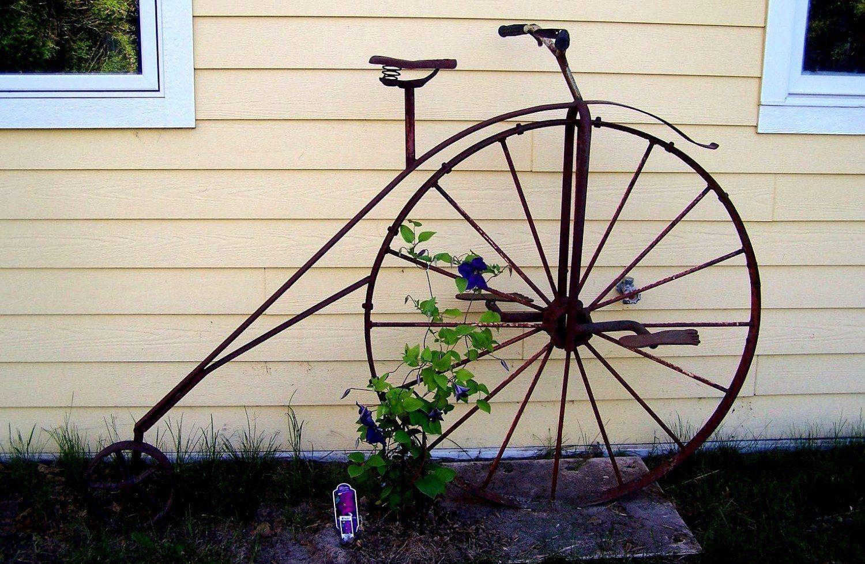 Garden decor trellis   Ways to Build a Gorgeous Garden Trellis This Summer  Summer