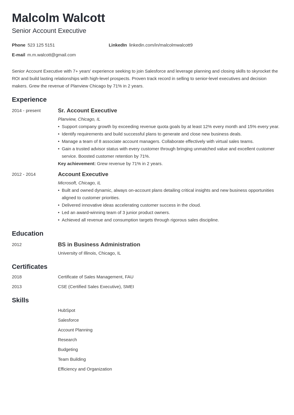 Account Executive Resume Example Template Minimo Executive Resume Account Executive Job Resume Examples