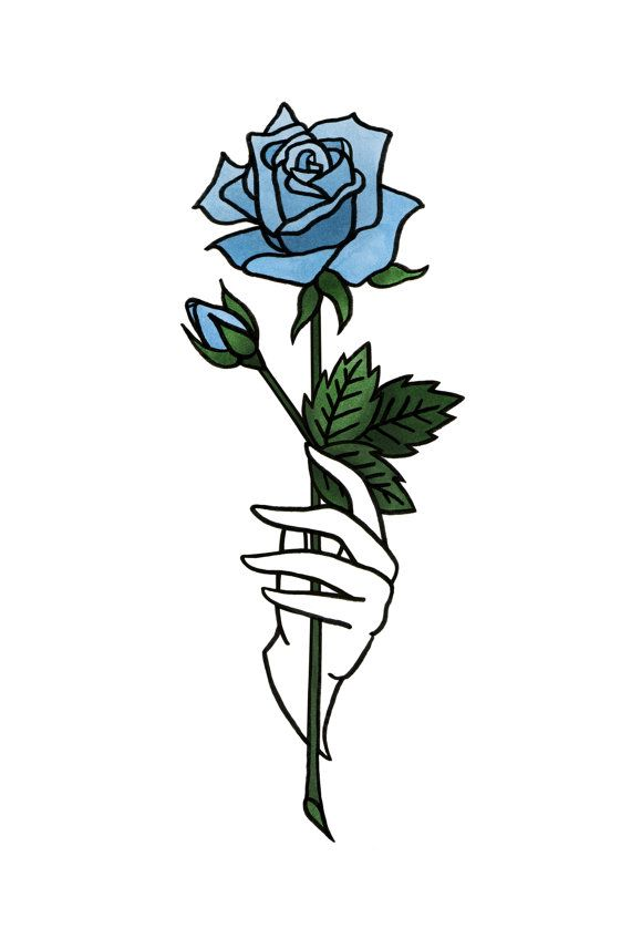 Color De Rosa De Impresion 4 X 6 En Color Azul O Rojo Flores
