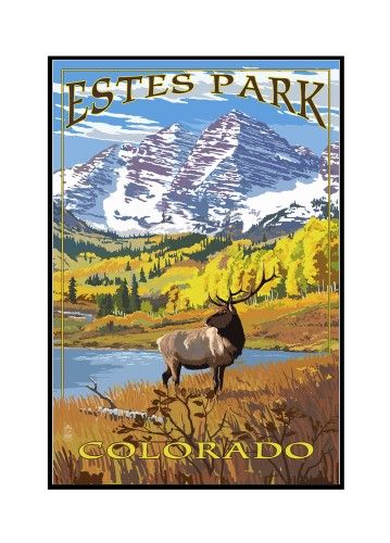 16x24 Framed Gallery Wrapped Stretched Canvas Elk and Mountains Estes Park Colorado