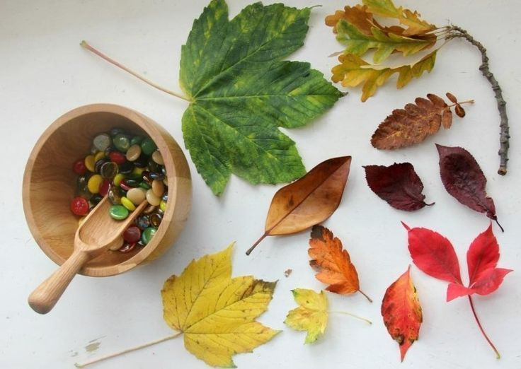 #Autumn  #Craft  #creative  #Ideas  #instructions  #Rezept Kastanien  #Kastanien Deko ? #4 #creative #craft  4 creative craft instructions for autumn and other ideas Kastanien Basteln #kastanienbastelnkinder #Autumn  #Craft  #creative  #Ideas  #instructions  #Rezept Kastanien  #Kastanien Deko ? #4 #creative #craft  4 creative craft instructions for autumn and other ideas Kastanien Basteln #kastanienbastelnkinder