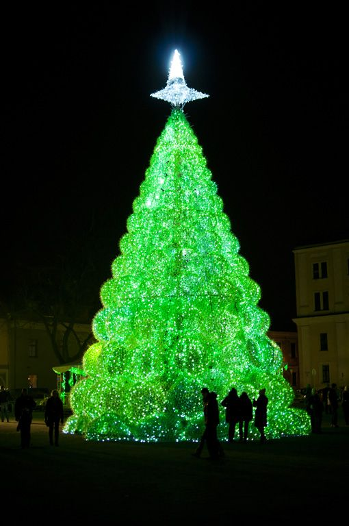 The Biggest Brightest Christmas Trees In The World Unusual Christmas Trees Christmas Tree Christmas