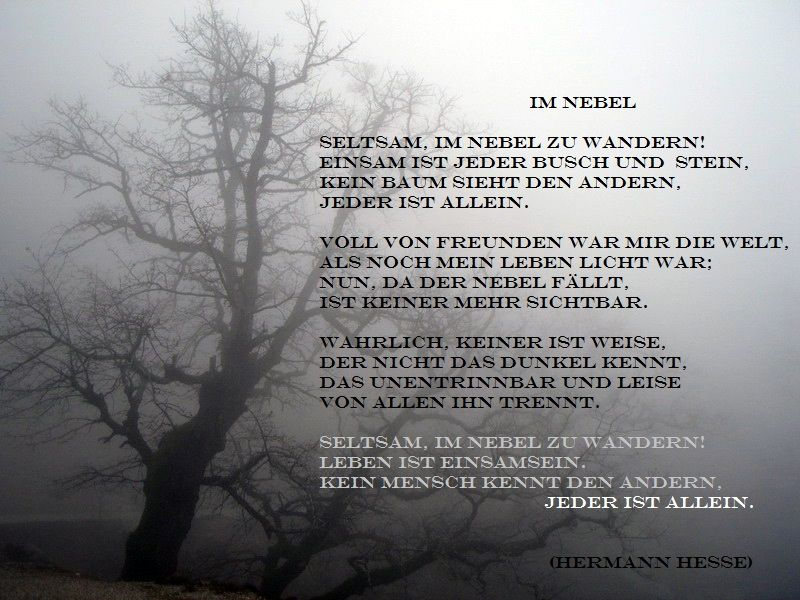 Gedicht hesse nebel