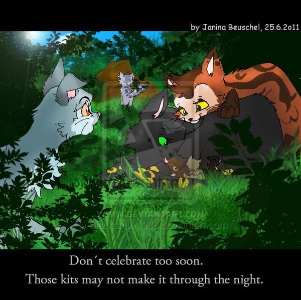 Warriors Cats Into The Wild Movie: Birth Of Tigerkit By JB-Pawstep On DeviantART