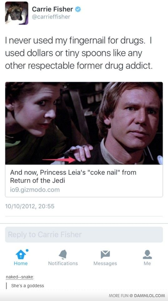 Like A Princess Carrie fisher, Funny pictures, Funny