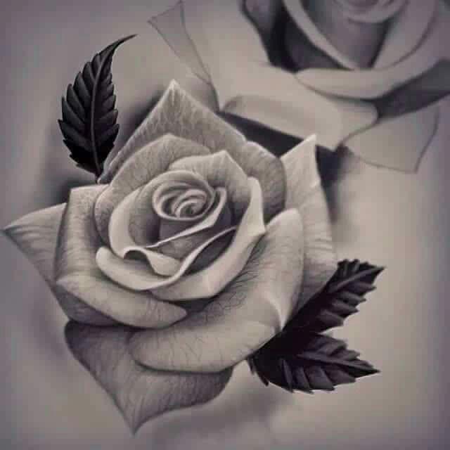 Mainline Art And Design : Épinglé par viktoriya tretiyakowa sur flowers pinterest