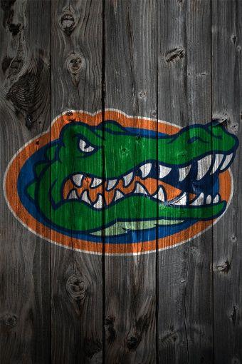 gators apple wallpaper hd - Google Search