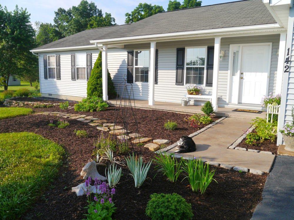 Cynthia Cranes Art and Gardening Goodness: My Boring Ranch ... on