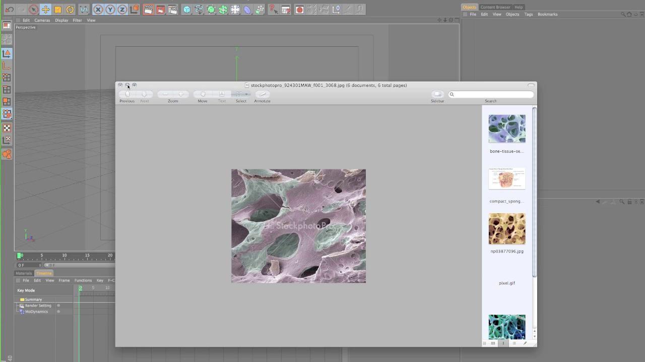 Cinema 4d tutorial: create a microscopic bone environment— part 1.