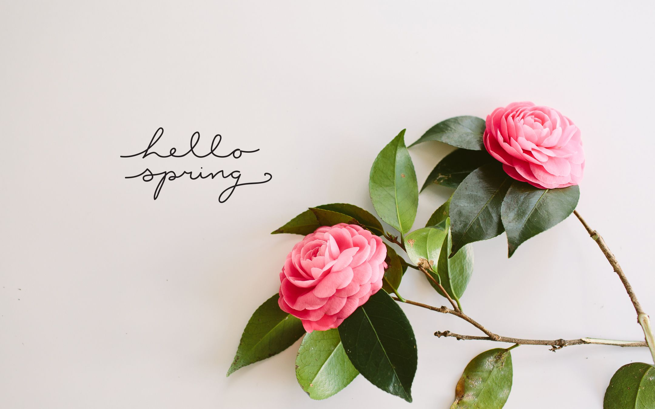 """LET'S TALK SPRING BEAUTY """"IT"""" ITEMS Hello spring"""