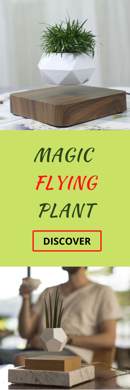 Magic Flying Plant