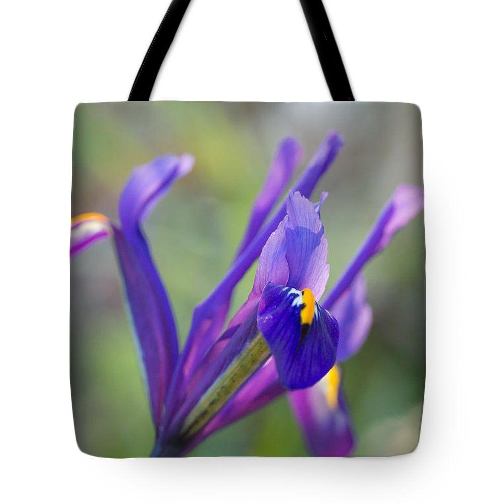Iris Tote Bag featuring the photograph Spring Iris Three by Mo Barton