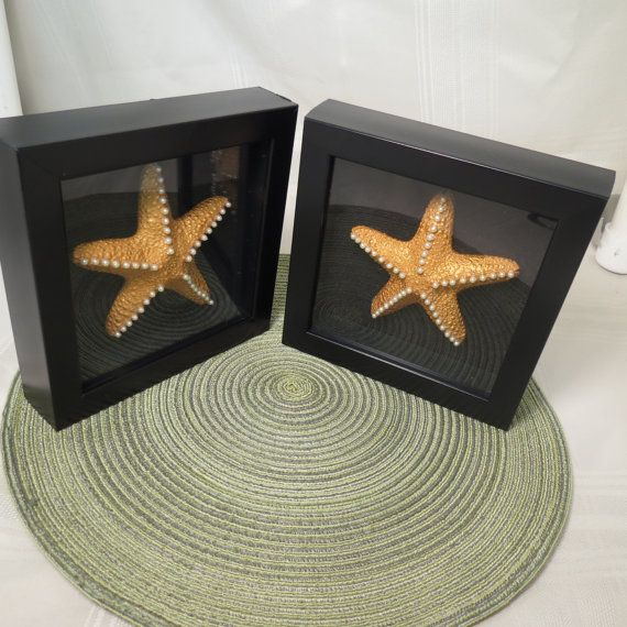 Black shadow box contaning bronze starfish with pearls. on Etsy, $30.00