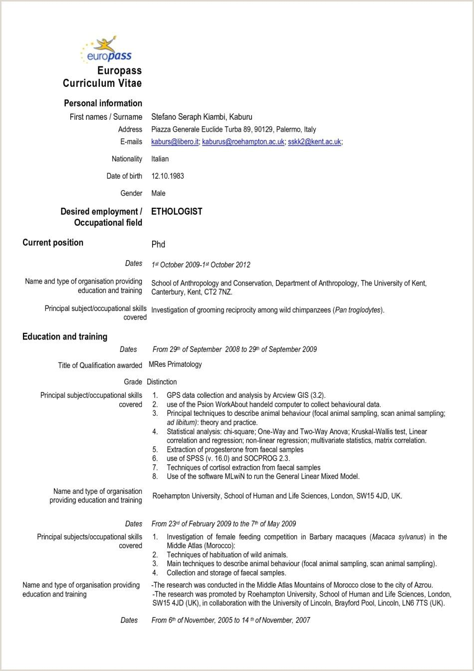 Pin on resume template free downloadable