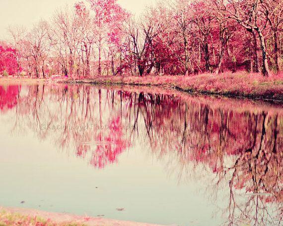 Woodland Reflections  16x20 Fine Art Landscape by KatieLloydPhoto, $50.00