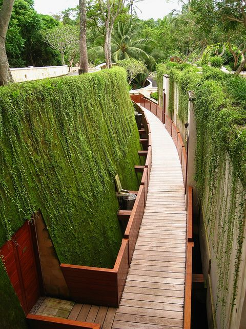 corridor to rooms at sayan in 2020 landscape design on backyard landscape architecture inspirations id=29223