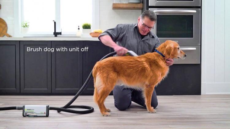 Bark Bath A Portable Dog Bath That Works Like A Vacuum Dog Bath