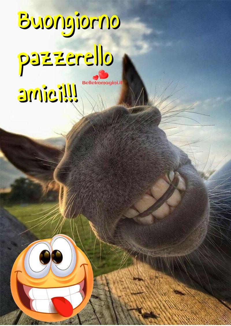 Buongiorno immagini belle per facebook e whatsapp for Vignette buongiorno divertenti