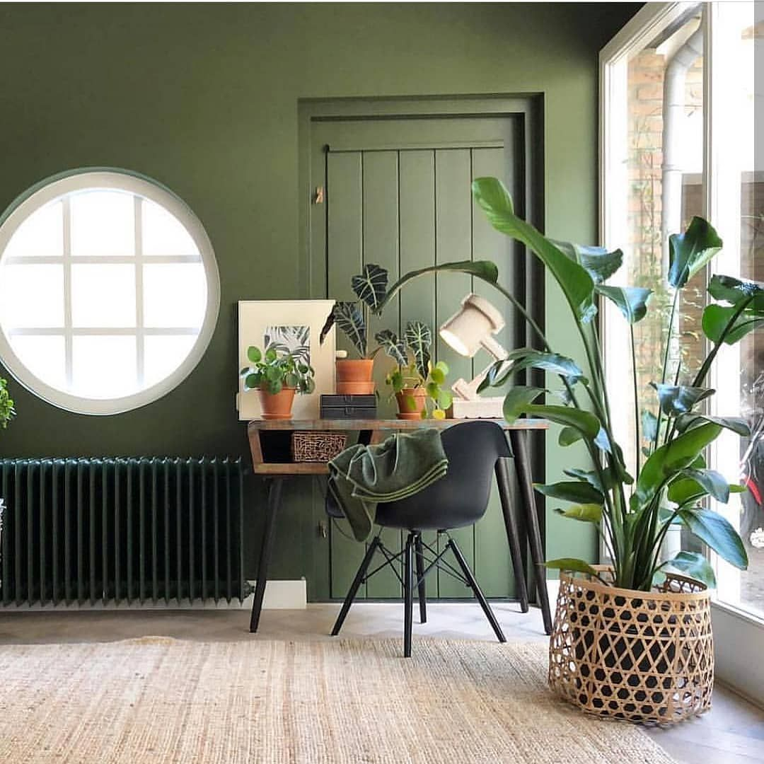 Fiona Interiors Content Blog On Instagram Do You Remember Play School Lets Look Through The R Living Room Plants Green Interior Design Green Interiors