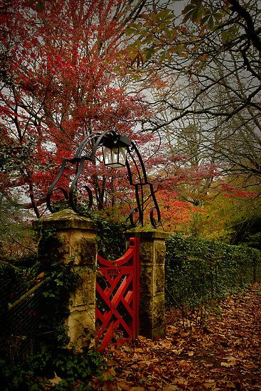 The Small Red Gate  ... Autumn in Mt Wilson,Australia