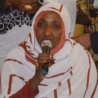 وفد جهاز المغتربين يعقد عددا من اللقاءات مع الجالية والخبراء والمرأة السودانية بنيروبي