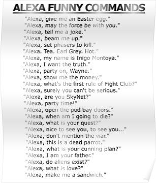 'Alexa & Echo Funny Secret Phrases' Poster by Combat Designz
