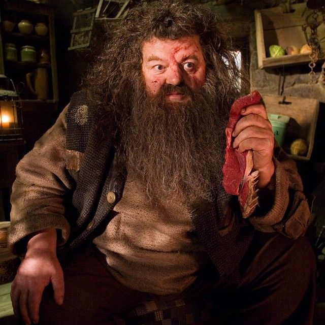 Robbie Coltrane Once Got A Fruit Bat Stuck In His Beard During A Scene In Hagrid S Hut Harrypotte Harry Potter Wiki Harry Potter Characters Harry Potter Film