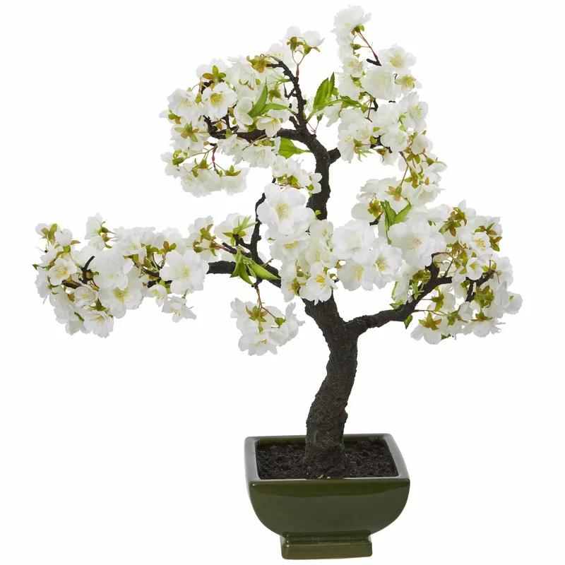 Bloomsbury Market 17 Cherry Blossom Bonsai Tree In Decorative Vase Wayfair In 2020 Cherry Blossom Bonsai Tree Artificial Cherry Blossom Tree Flowering Bonsai Tree