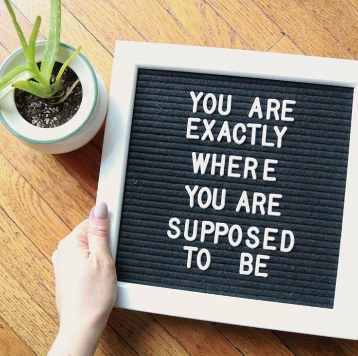 You Re Exactly Where You Re Supposed To Be Letterboard Google Search Letter Board Felt Letter Board Message Board Quotes