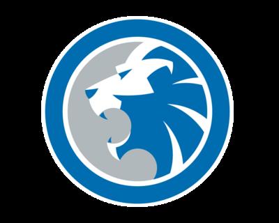 Pin By James Maluchnik On Eyespeak 4 0 Detroit Lions Logo Lions Detroit Lions