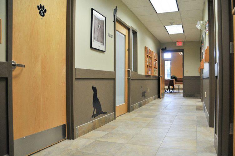 Veterinary Hospital Interior Design Veterinary hospital