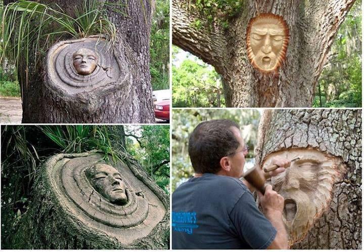 Face on the Tree #Amazing #Art Amazing.pk