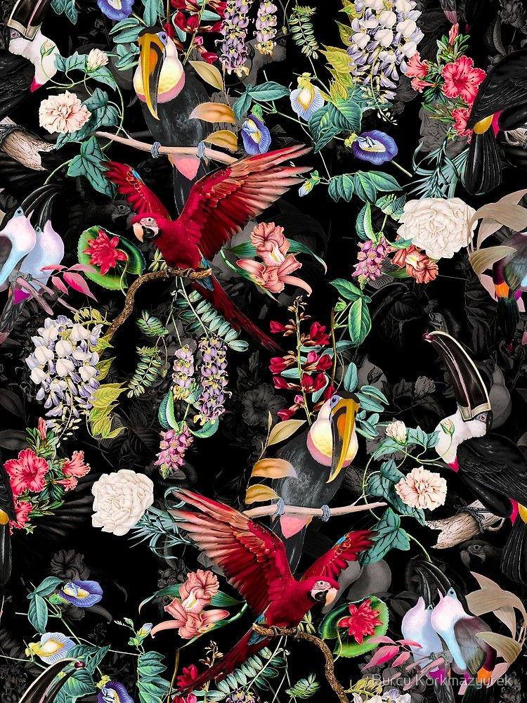 Floral and Birds IX Poster
