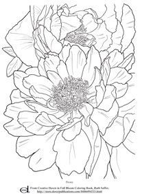 adult coloring pages flowers - Flower Coloring Books For Adults