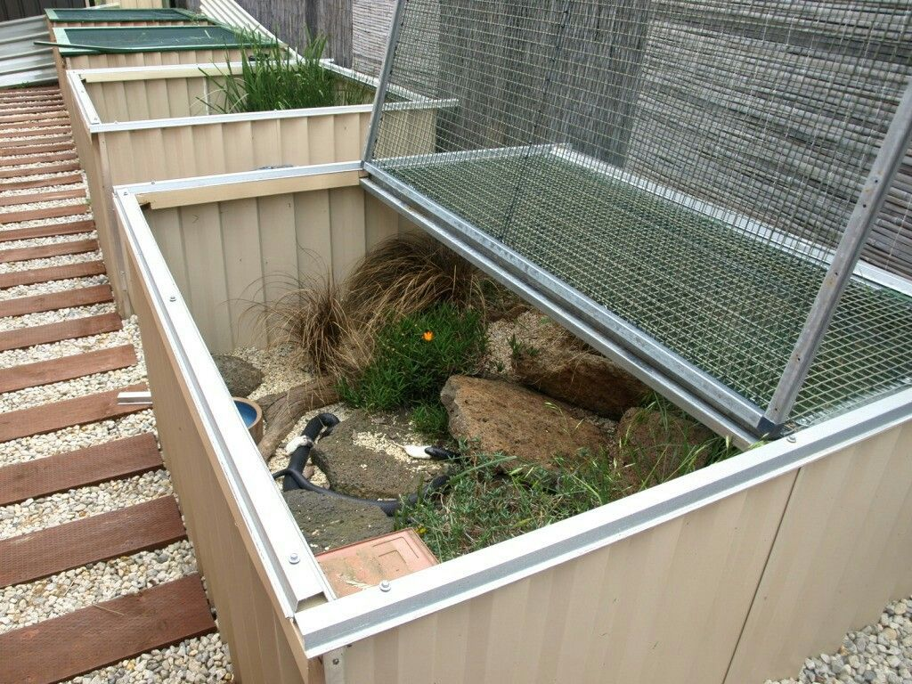 Tegu enclosure | Reptile enclosure, Pet enclosure, Reptiles