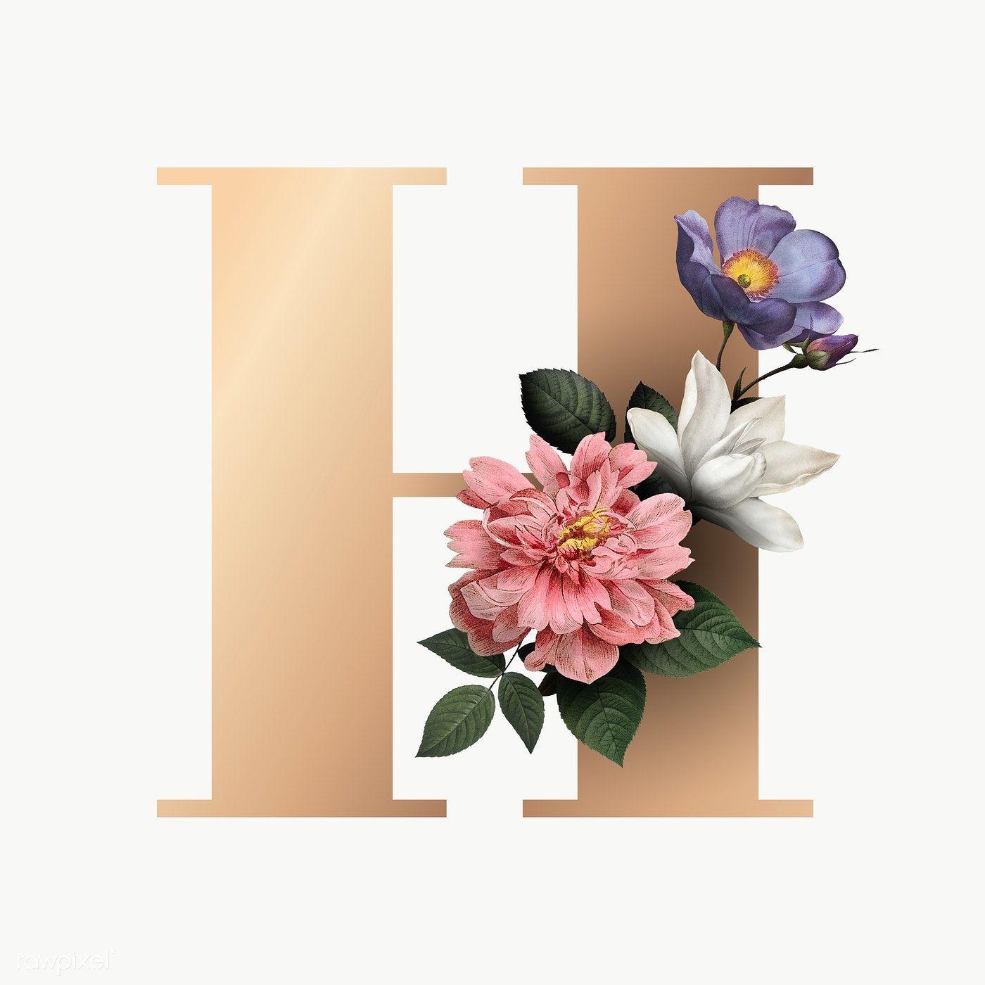 Classic And Elegant Floral Alphabet Font Letter H Transparent Png Free Image By Rawpixel Com Fonts Alphabet Lettering Fonts Lettering Alphabet Fonts