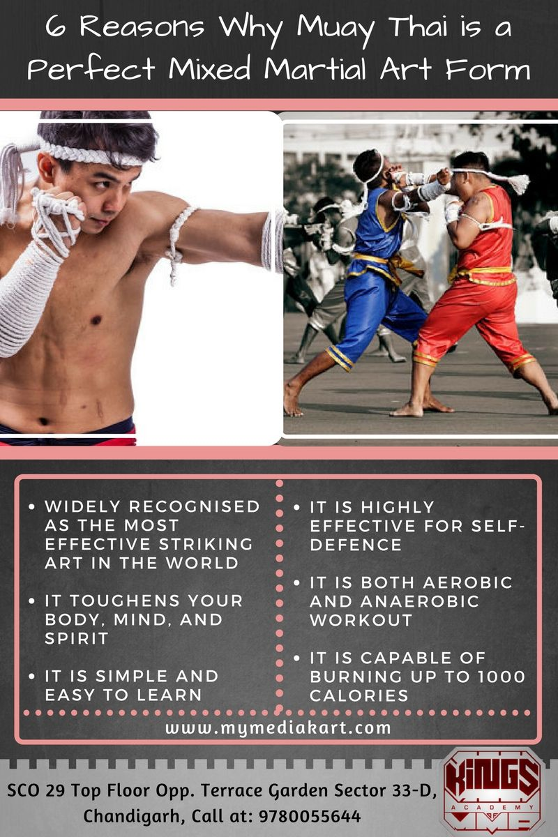 Muay Thai is the best form of mixed martial arts training because ...