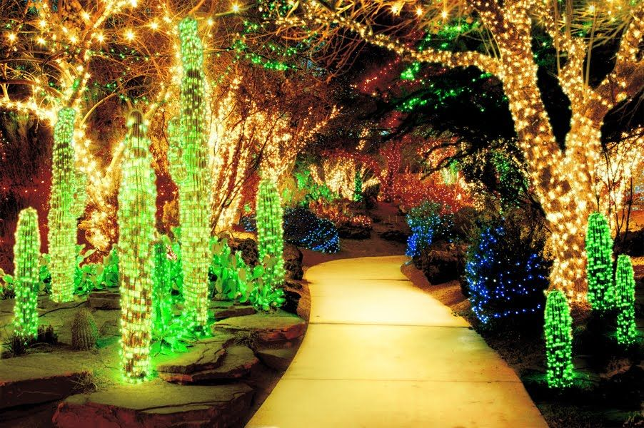 The Las Vegas Springs Preserve lights their desert garden with ...