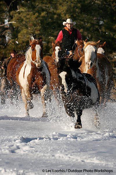 """""""Winter Cowboys"""""""
