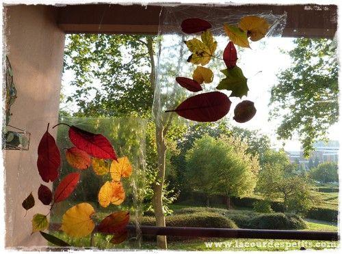 Activit d 39 automne des feuilles nos fen tres for Decoration fenetre maternelle