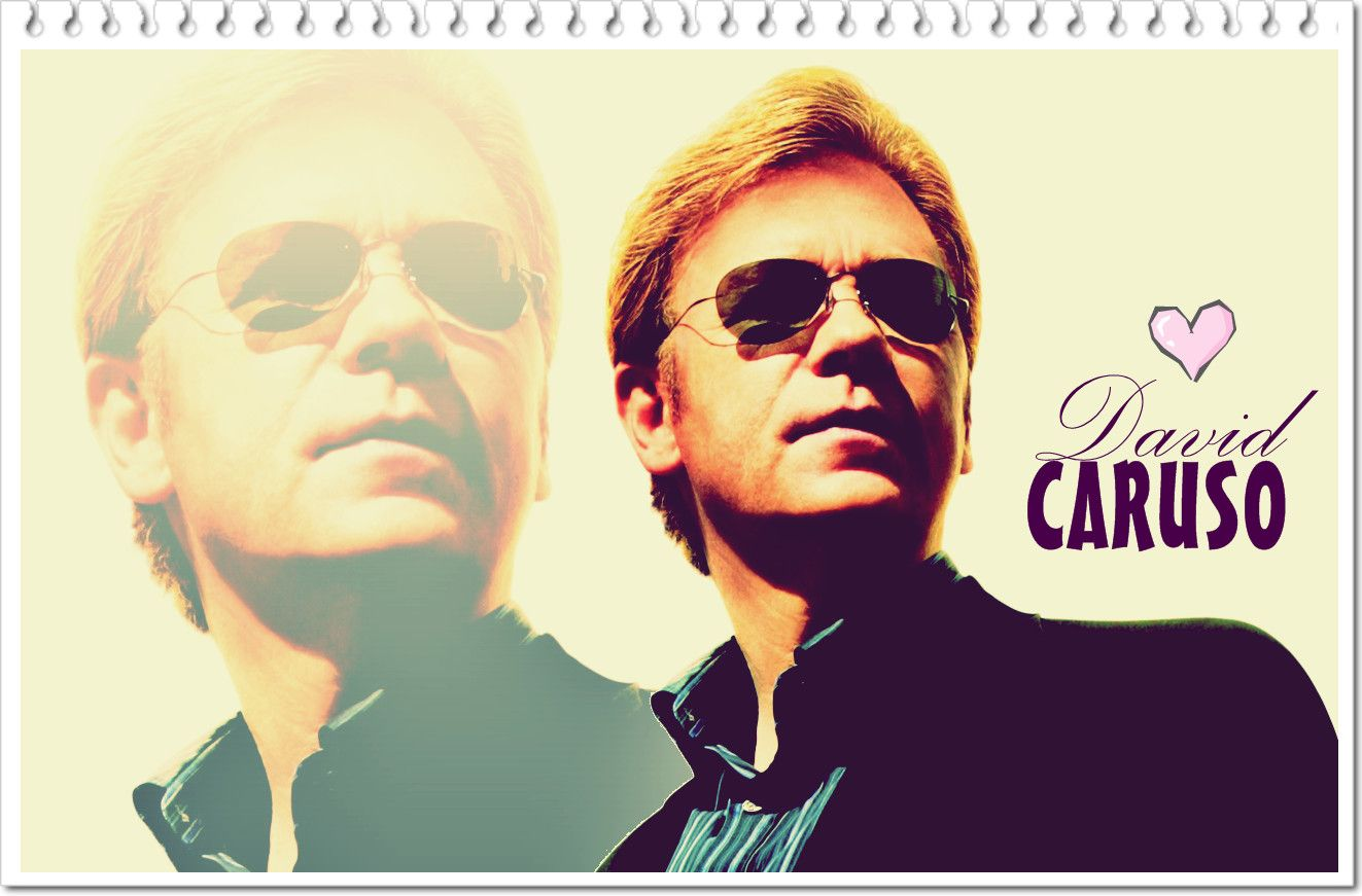 david caruso sunglasses