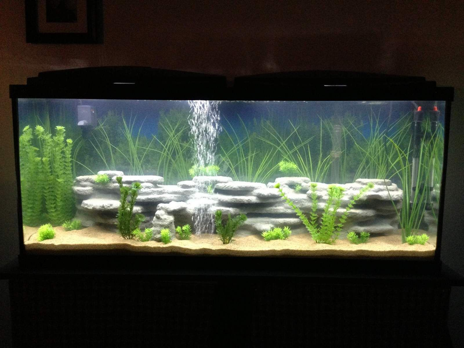 Image Result For 55 Gallon Fish Tank 3d Background Saltwater Fish Tanks 55 Gallon Tank Fish Tank