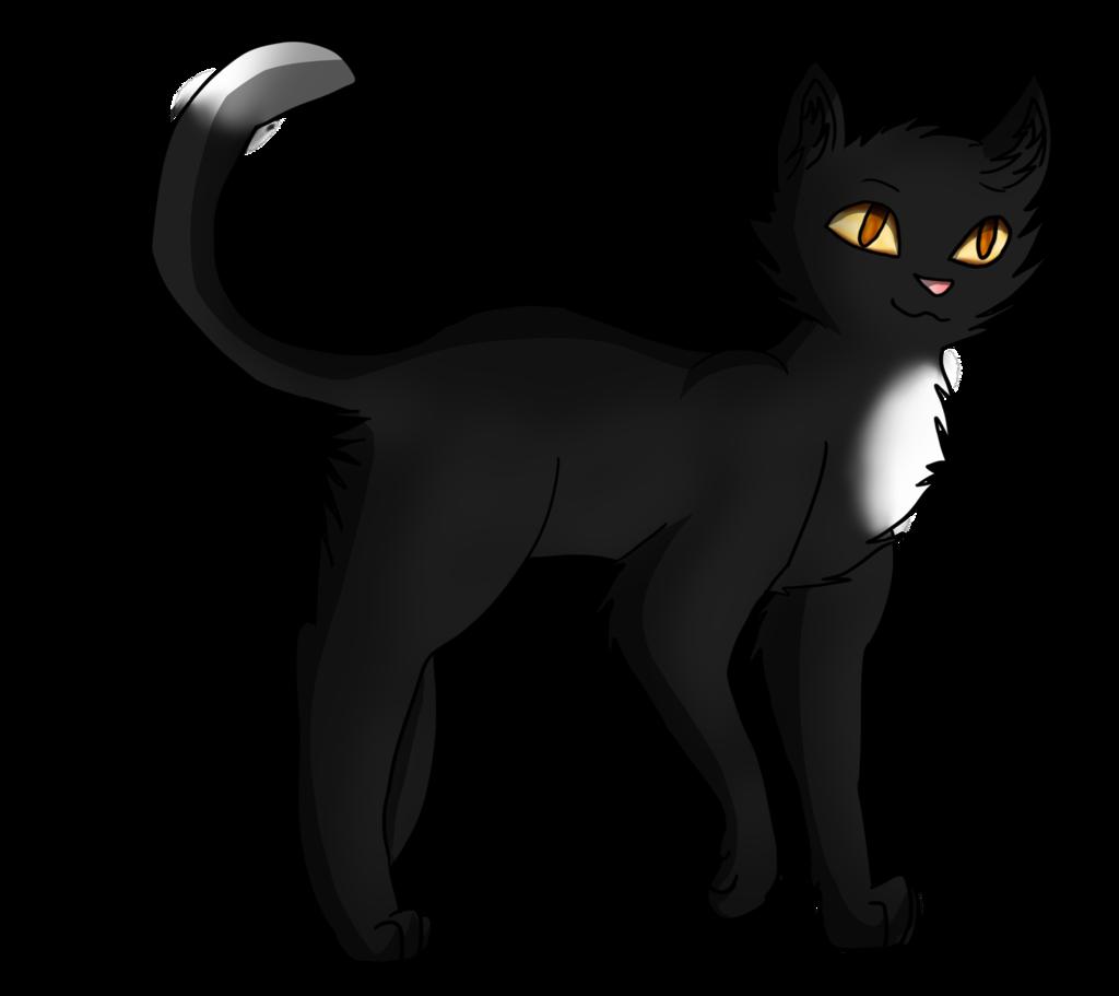 Ravenpaw Warrior cats | Warriors cats | Warrior cats books