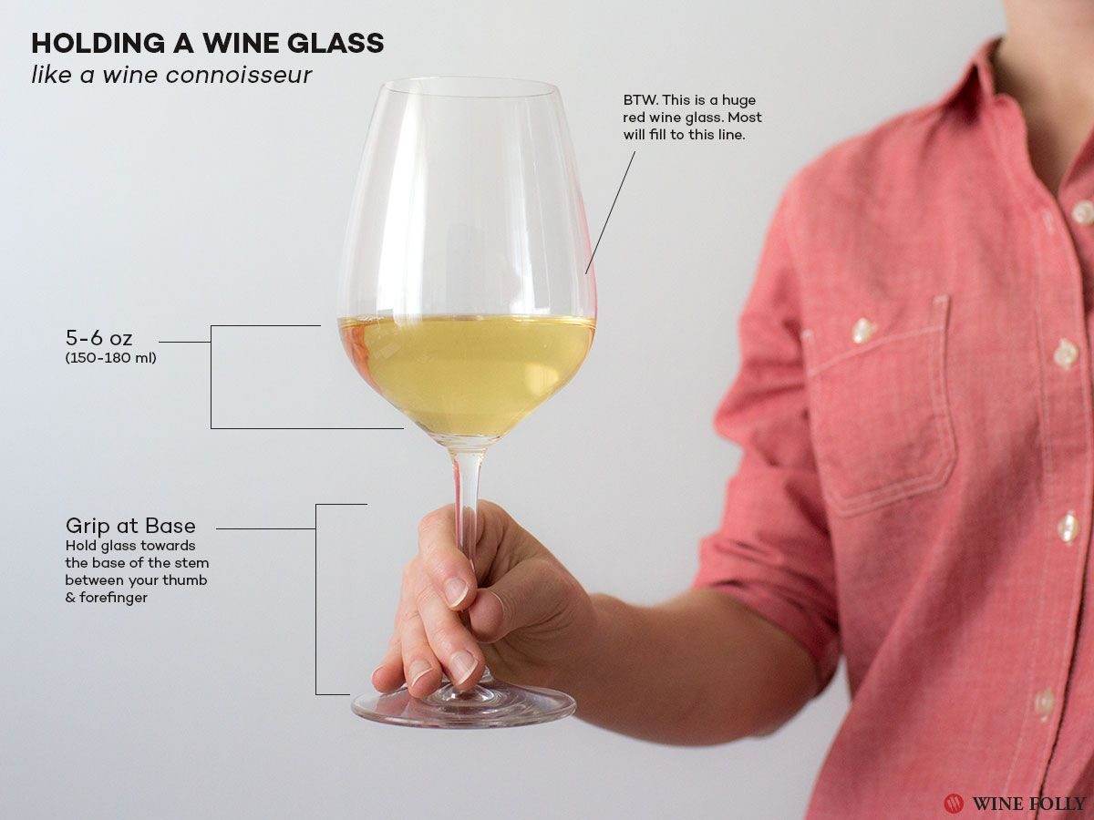 How To Hold A Glass Of Wine Wine Folly Wine Basics Wine Facts