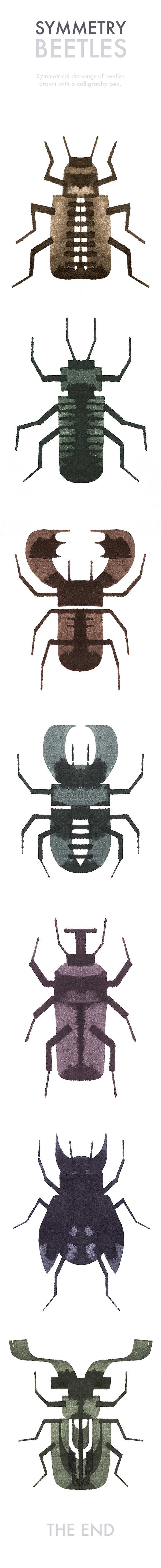 Symmetry Beetles by Andrew Fox, via Behance