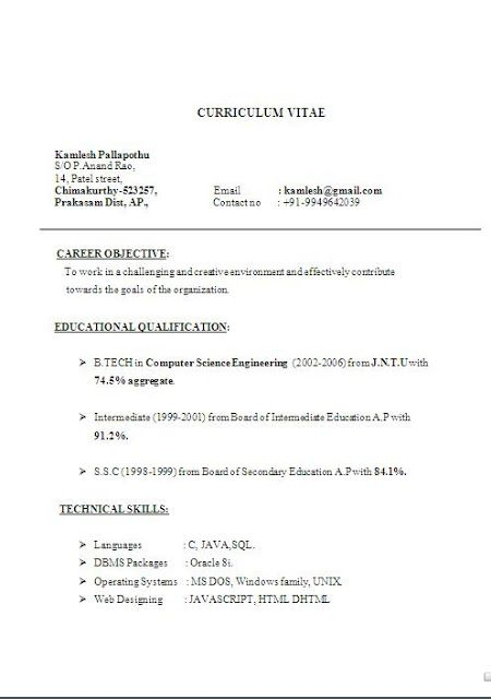 Short Resume Example OfExcellent Curriculum Vitae CV Format With Career Objective Job